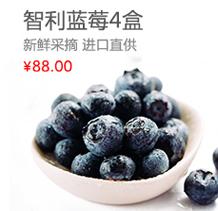 车厘子/莓类