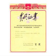 中国国家发明奖